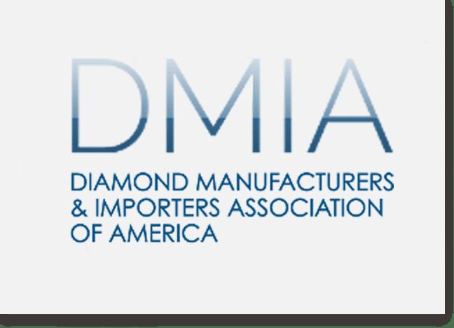 DMIA Logo